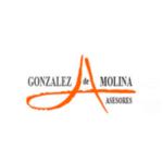 GONZÁLEZ DE MOLINA ASESORES
